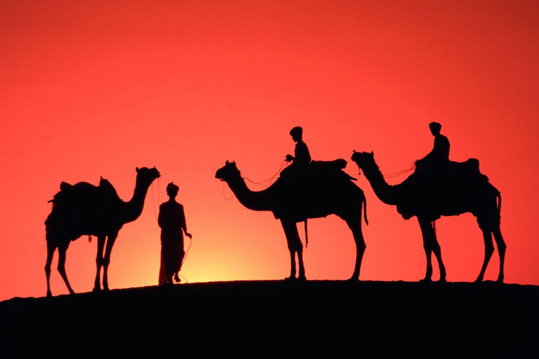Desert safari Dubai camel riding